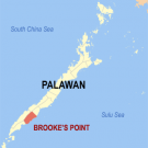 Location where Brooke's point in Palawan